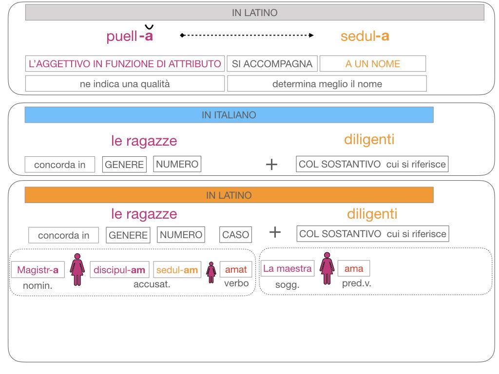 5. AGGETTIVO FEMMINILE PRIMA CLASSE_SIMULAZIONE.117
