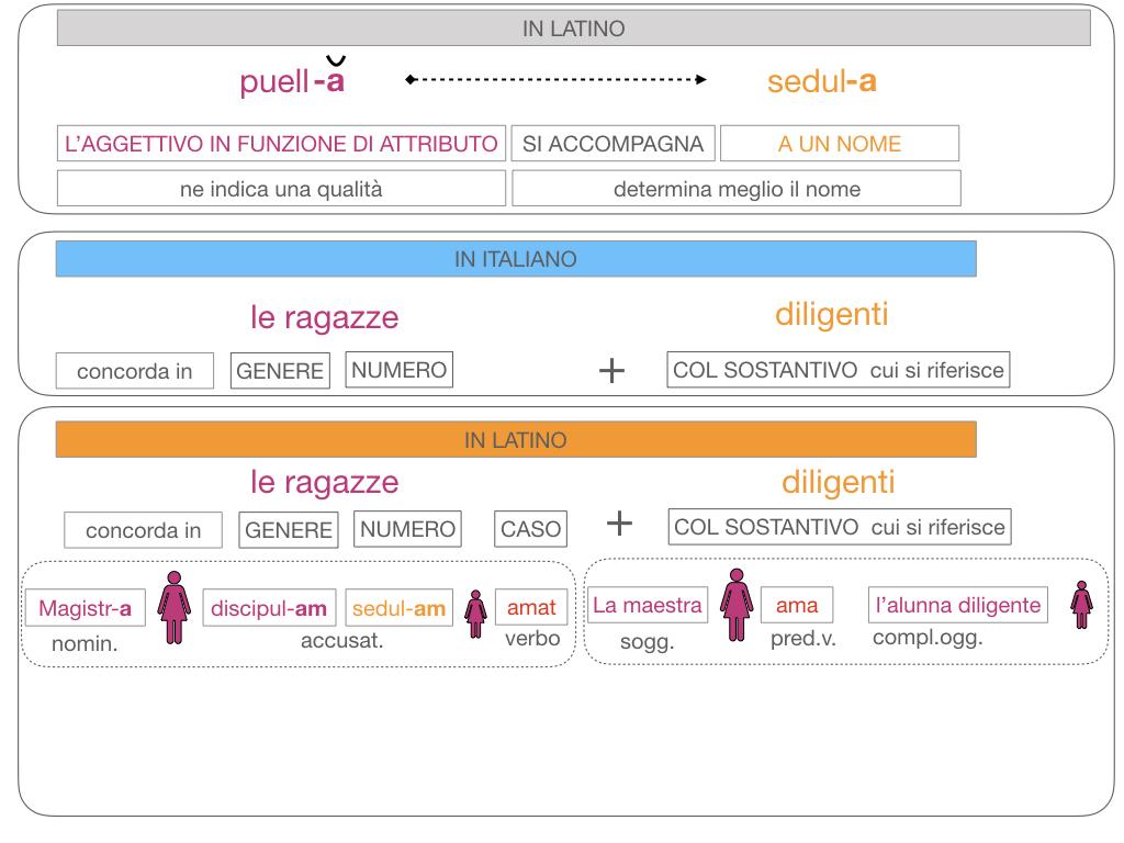 5. AGGETTIVO FEMMINILE PRIMA CLASSE_SIMULAZIONE.119