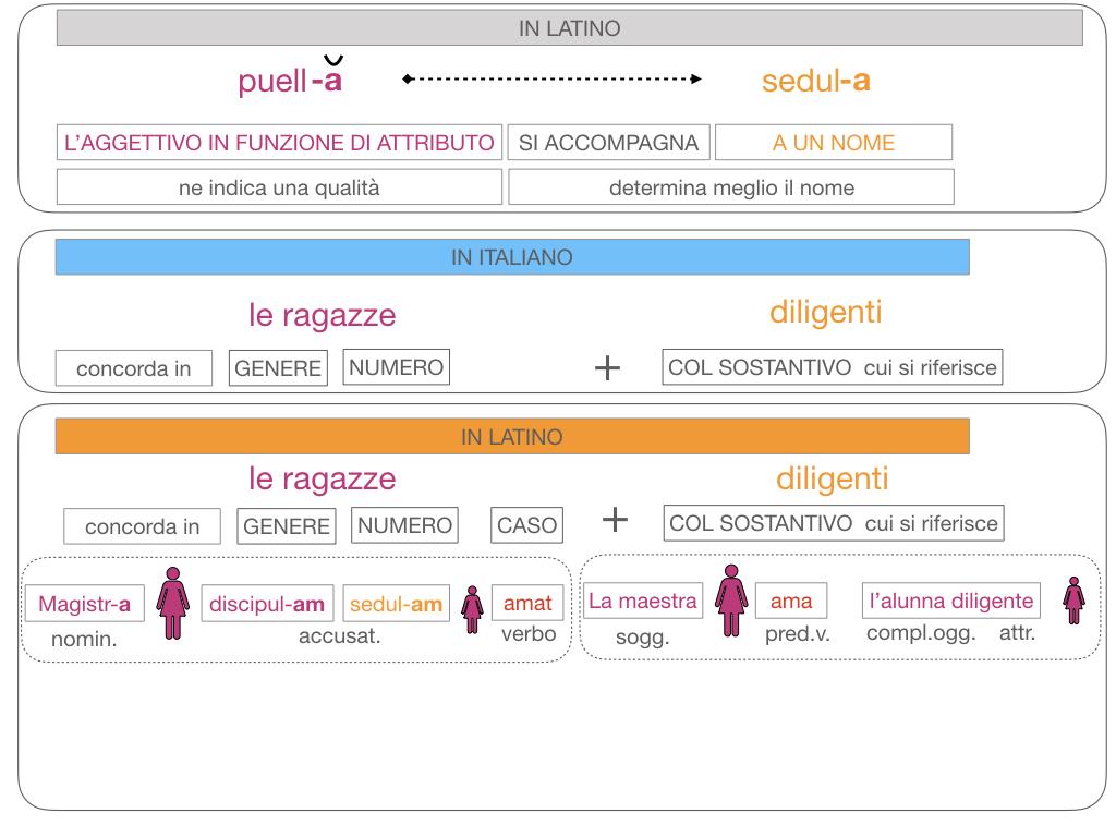 5. AGGETTIVO FEMMINILE PRIMA CLASSE_SIMULAZIONE.120