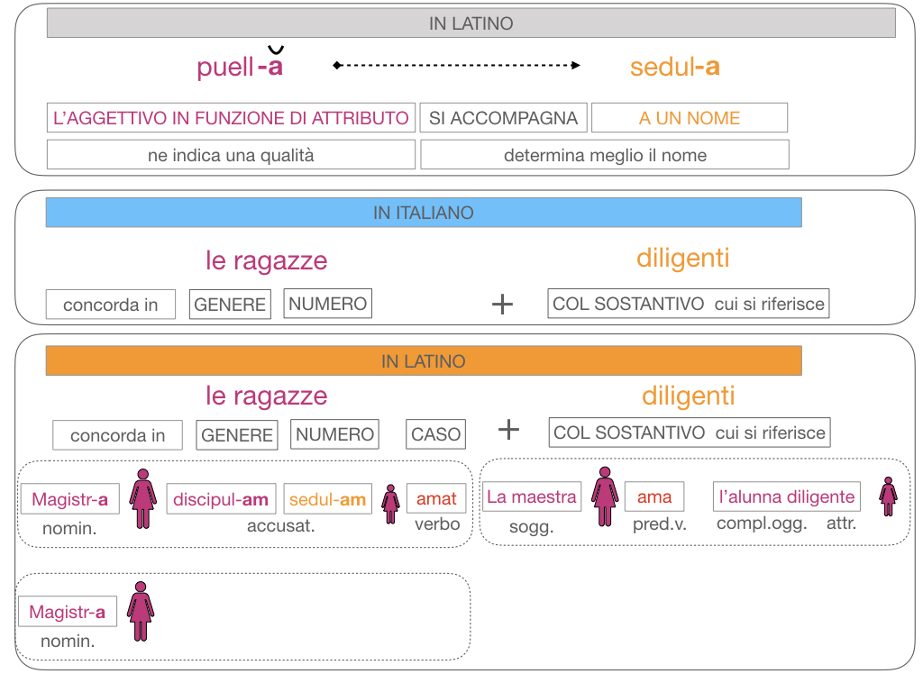 5. AGGETTIVO FEMMINILE PRIMA CLASSE_SIMULAZIONE.121