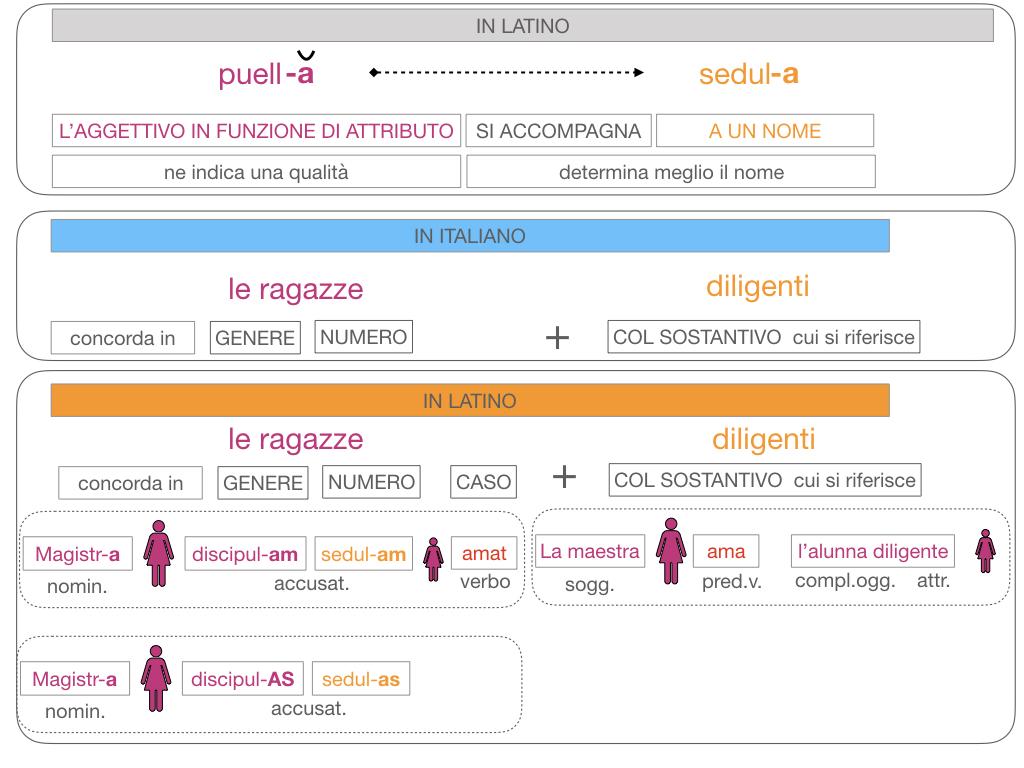 5. AGGETTIVO FEMMINILE PRIMA CLASSE_SIMULAZIONE.123