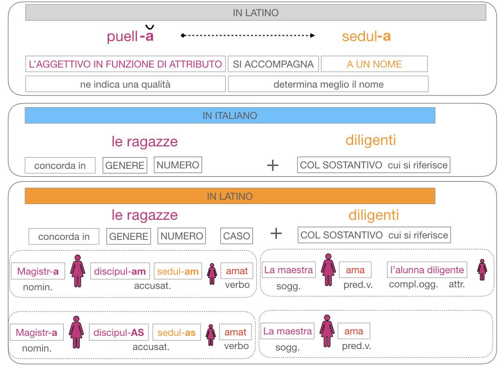 5. AGGETTIVO FEMMINILE PRIMA CLASSE_SIMULAZIONE.126