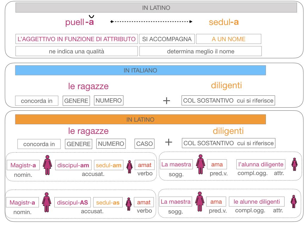 5. AGGETTIVO FEMMINILE PRIMA CLASSE_SIMULAZIONE.127