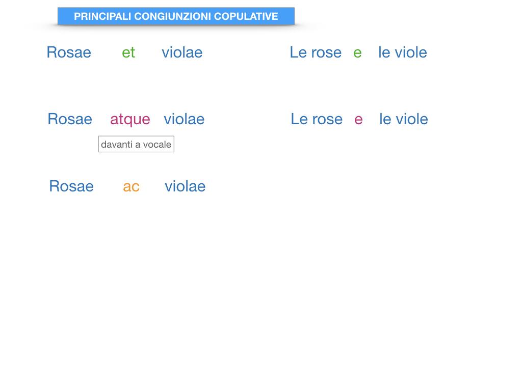 6. INDICATIVO PRESENTE VERBO SUM_PREDICATO VERBALE E NOMINALE_SIMULAZIONE.207