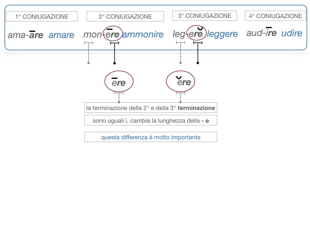 7. VERBI PRIMA CONIUGAZIONE_SIMULAZIONE.081